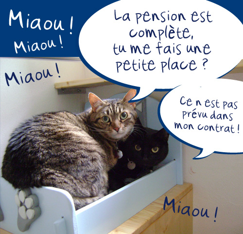 pension chat 27210