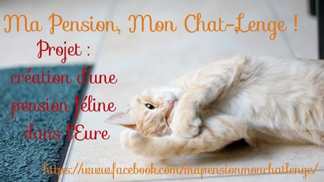 pension chat eure