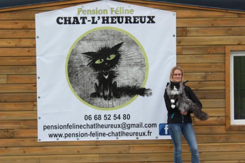 pension chat evreux