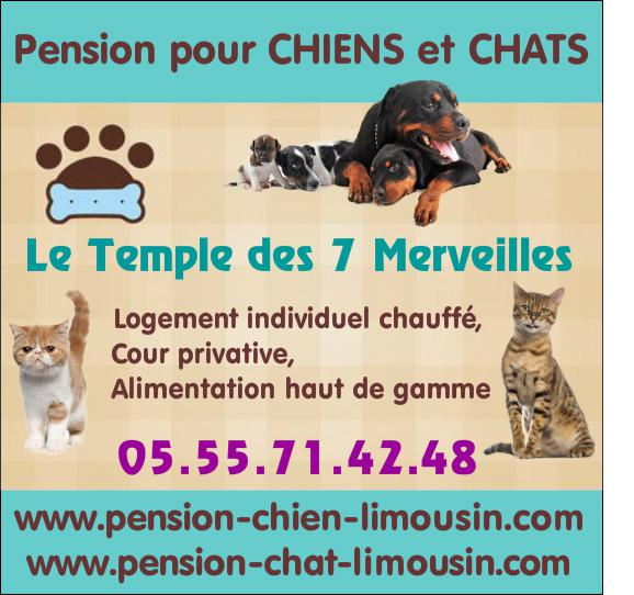 pension chat limousin