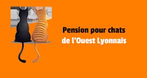 pension chat ouest lyonnais