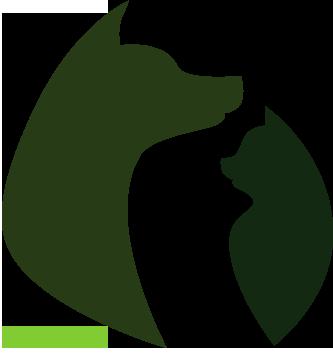 pension chat saintes