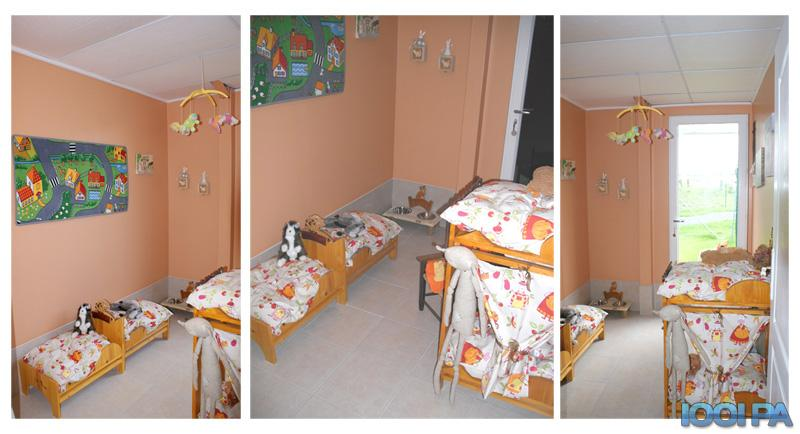 pension chat st eloy de gy