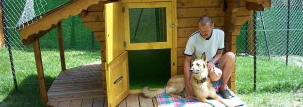 pension chien 62