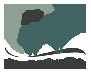 pension chien 76