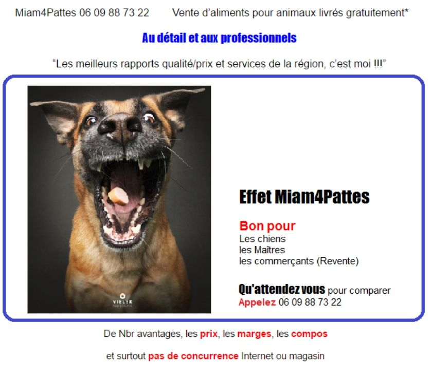pension chien 83136
