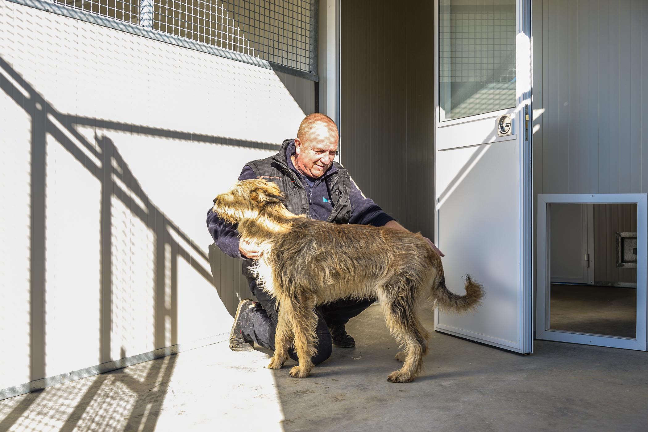 pension chien bourg en bresse