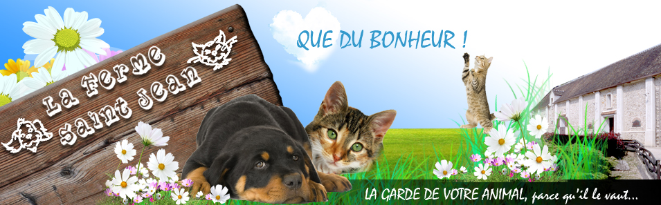 pension chien fontenay tresigny