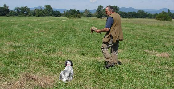 pension chien kogenheim