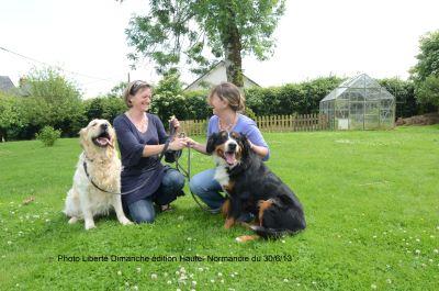 pension chien normandie