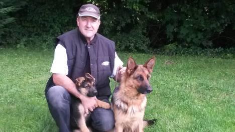 pension chien obenheim