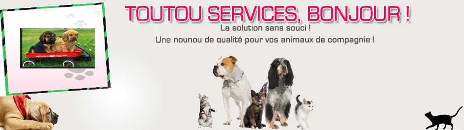 pension chien toulon