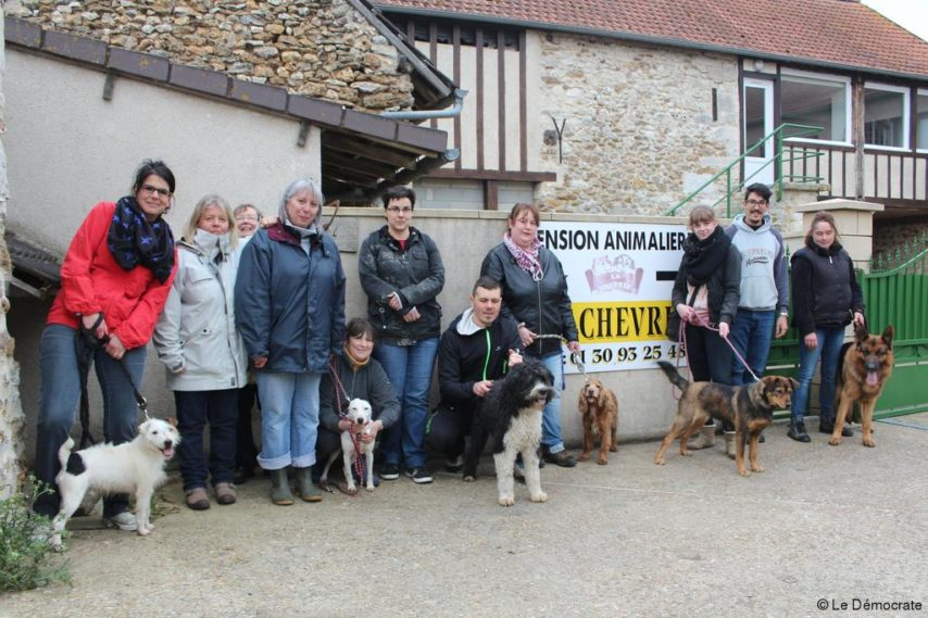 pension chien villeneuve en chevrie