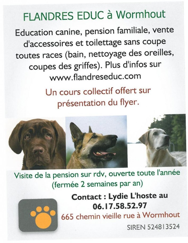 pension chien wormhout