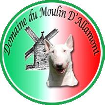 pension chien yonne