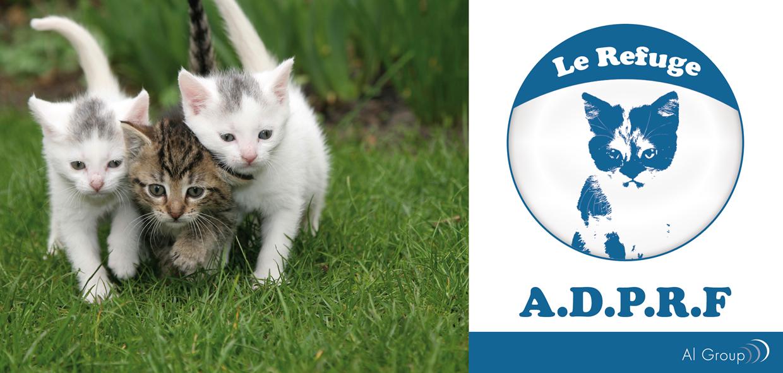 refuge chat aix en provence avenue jean moulin