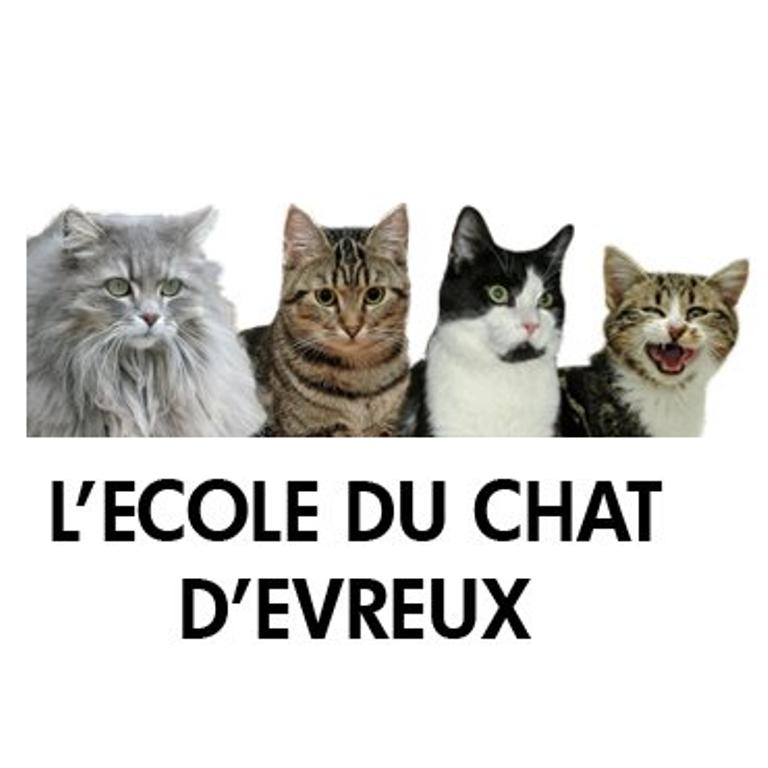 refuge chat evreux