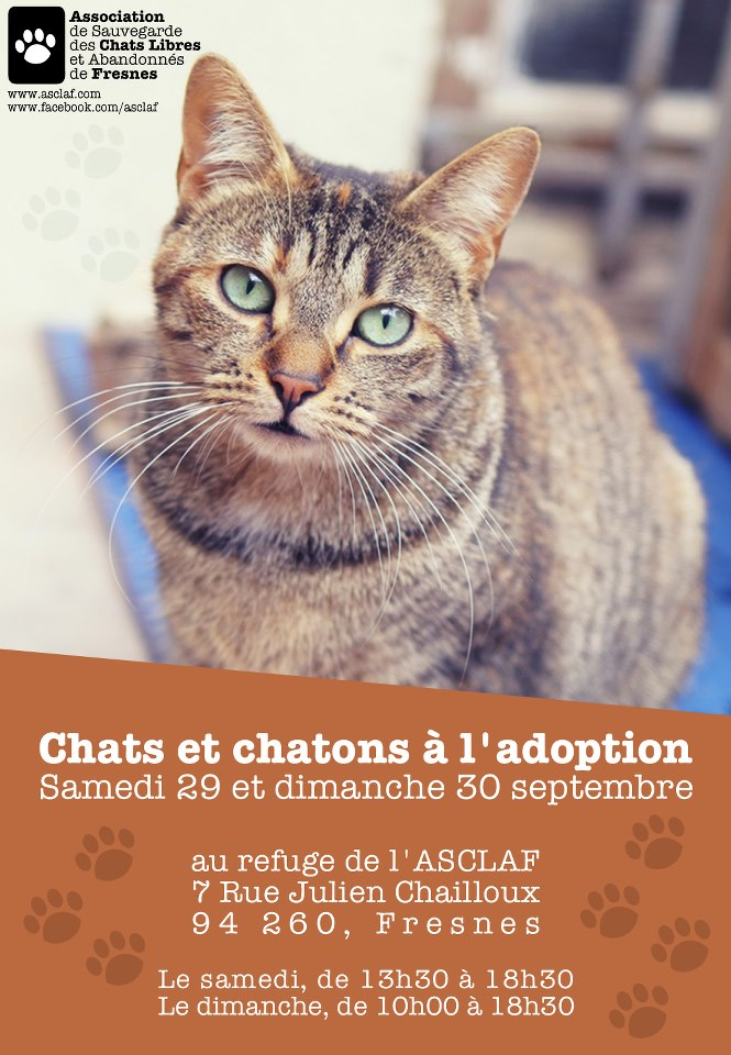 refuge chat fresnes