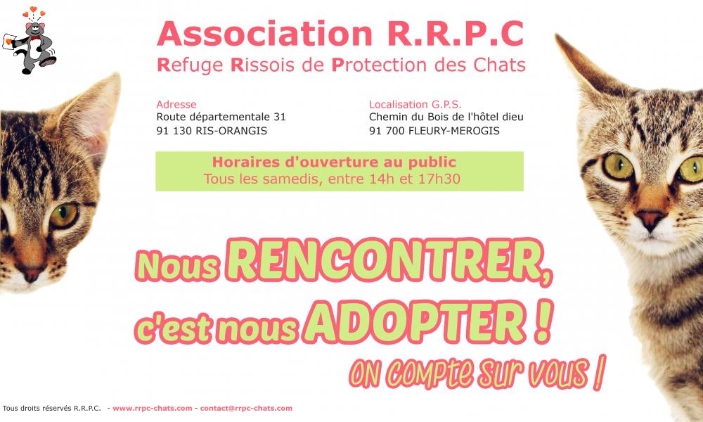 refuge chat ris orangis