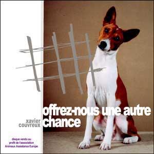 refuge chien 64
