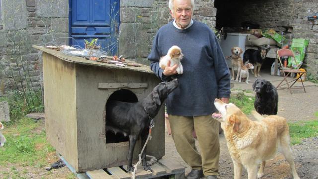 refuge chien france