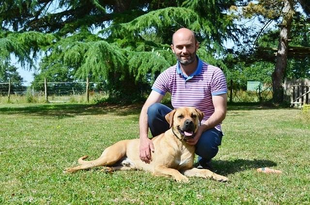 refuge chien pour vacances