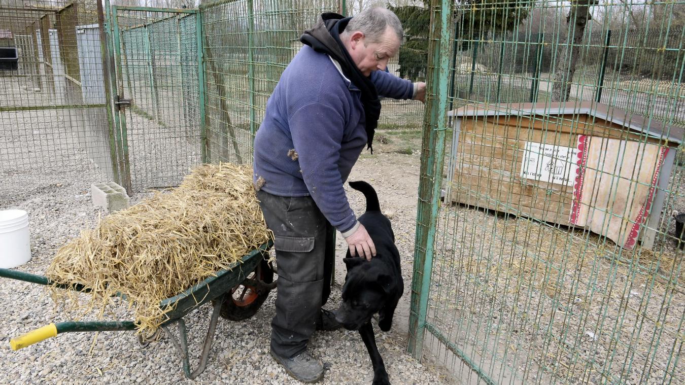 refuge chien soissons