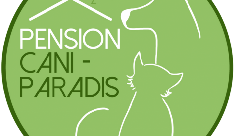 pension chat macon