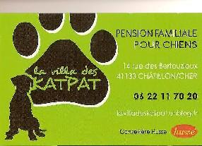 pension chat pruniers en sologne